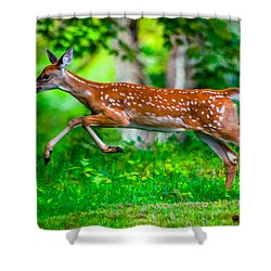 Fast Fawn 2 Shower Curtain