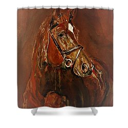 Fasten With A Buckle Shower Curtain