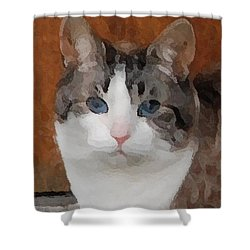 Fat Cats Of Ballard 3 Shower Curtain