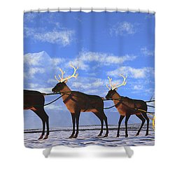 Father Christmas Shower Curtain by Corey Ford