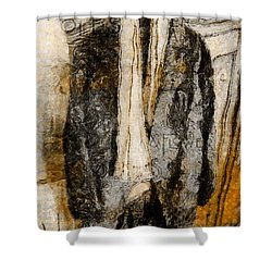 Father's Coat Shower Curtain by Claire Bull