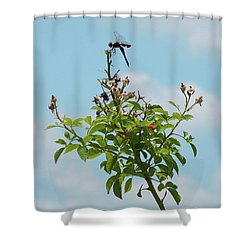 Fathers Day Visit Shower Curtain