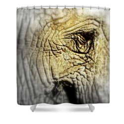 Fatigue Shower Curtain