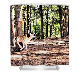 Faun In Flight Shower Curtain