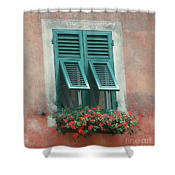 Shower Curtain featuring the photograph Faux  Painting Window  by Frank Stallone