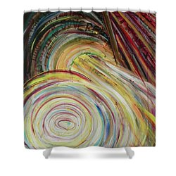 Shower Curtain featuring the painting Favor by Lisa DuBois