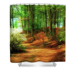 Favorite Path Shower Curtain by Lois Bryan