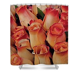 Favorite Roses Shower Curtain by Michael Flood