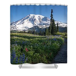 Favorite Time Of Year Shower Curtain