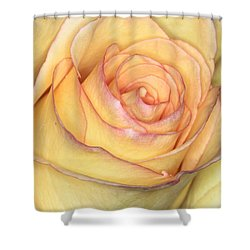 Favorite Yellow Shower Curtain