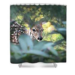 Fawn Peeking Through Bushes Shower Curtain
