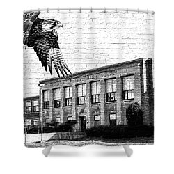 Fchs Falcons Shower Curtain