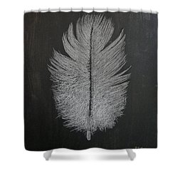 Feather 1 Shower Curtain