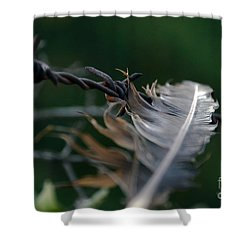 Feather And Barbed Wire Shower Curtain