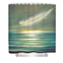 Feather At Sunset Shower Curtain
