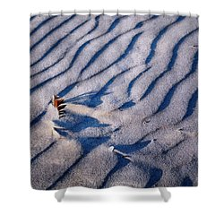 Shower Curtain featuring the photograph Feather In Sand by Michelle Calkins