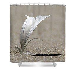 Feather Port Jefferson New York Shower Curtain
