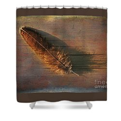 Shower Curtain featuring the photograph Feather Study On Barnboard by Clare VanderVeen