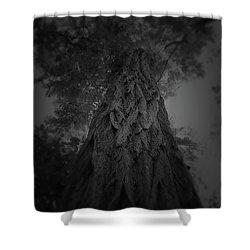 Feathered Bark Shower Curtain