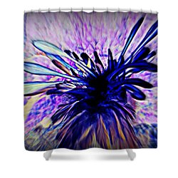Feathered Crown II Shower Curtain
