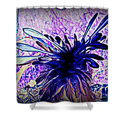 Feathered Crown Shower Curtain