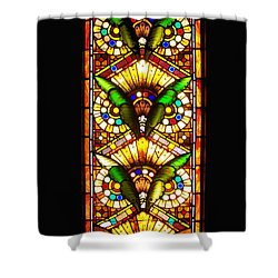 Feathered Folly Shower Curtain by Donna Blackhall