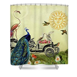 Feathered Friends In Paris, France Shower Curtain by Peggy Collins