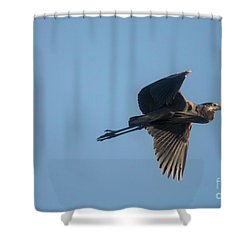 Shower Curtain featuring the photograph Feathering The Nest by David Bearden
