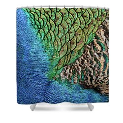 Feathers #1 Shower Curtain