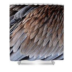 Feathers Cascade Shower Curtain