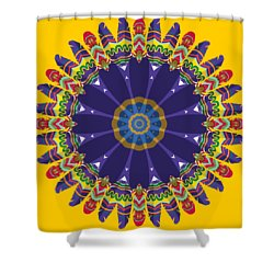 Feathers In The Round Shower Curtain by Mary Machare