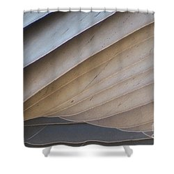 Feathers Shower Curtain by Mary Mikawoz