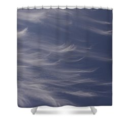 Shower Curtain featuring the photograph Feathery Sky by Shari Jardina
