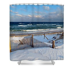 February Delight Shower Curtain by Dianne Cowen