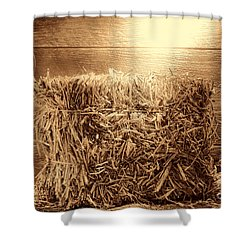 Feed Shower Curtain by American West Legend By Olivier Le Queinec