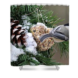 Feeding Feathered Friends Shower Curtain