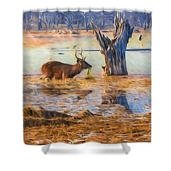 Feeding In The Lake Shower Curtain by Pravine Chester