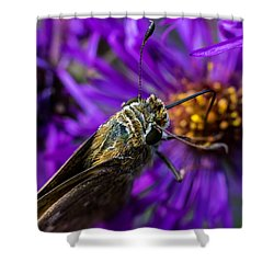 Shower Curtain featuring the photograph Feeding by Jay Stockhaus