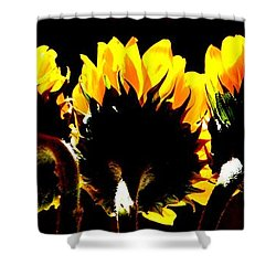 Soaking Up Sun Shower Curtain
