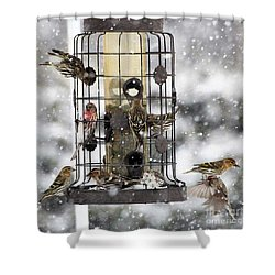 Feeding Time In The Great White North Shower Curtain