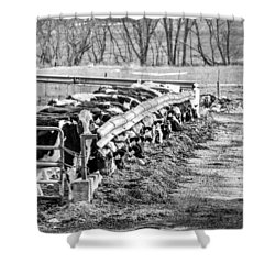 Feedlot Shower Curtain