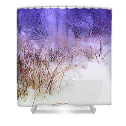 Feel Of Cold Land Shower Curtain