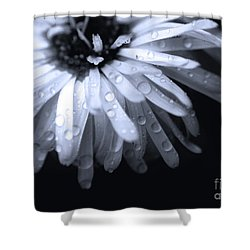Feel The Rain Shower Curtain