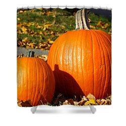 Feeling Fall Shower Curtain by Kyle West