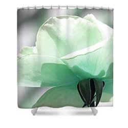 Shower Curtain featuring the photograph Feeling Fresh by The Art Of Marilyn Ridoutt-Greene