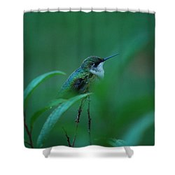 Feeling Green Shower Curtain