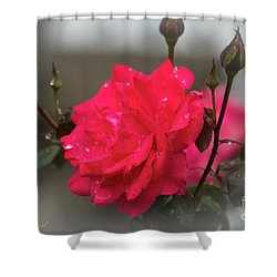 Feeling Rosy Shower Curtain