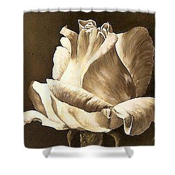 Shower Curtain featuring the painting Feeling The Light  by Natalia Tejera