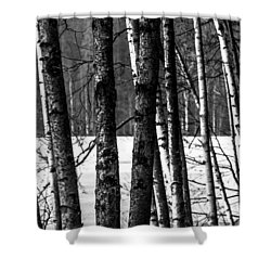 Fellows Shower Curtain