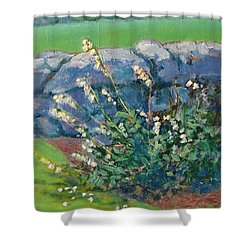 Fells Foxglove Shower Curtain
